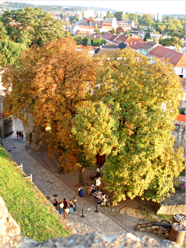 eger-view-from-the-castle-final-III-stroke
