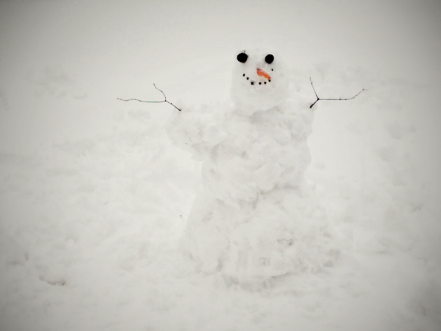 snowman with branch hands