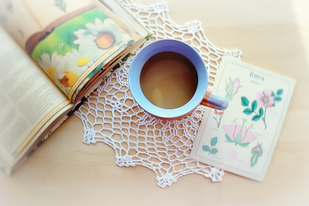 book about healing plants and blue handmade mug